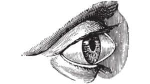keratocone operation keratocone paris keratocone diagnostic maladies des yeux docteur nathalie butel ophtalmologiste paris 16 ophtalmologue paris 16